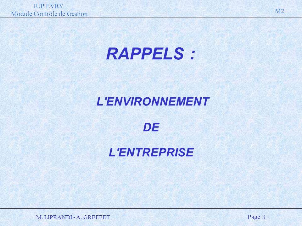 IUP EVRY Module Contrôle de Gestion M2 M. LIPRANDI - A. GREFFET Page 3 L'ENVIRONNEMENT DE L'ENTREPRISE RAPPELS :