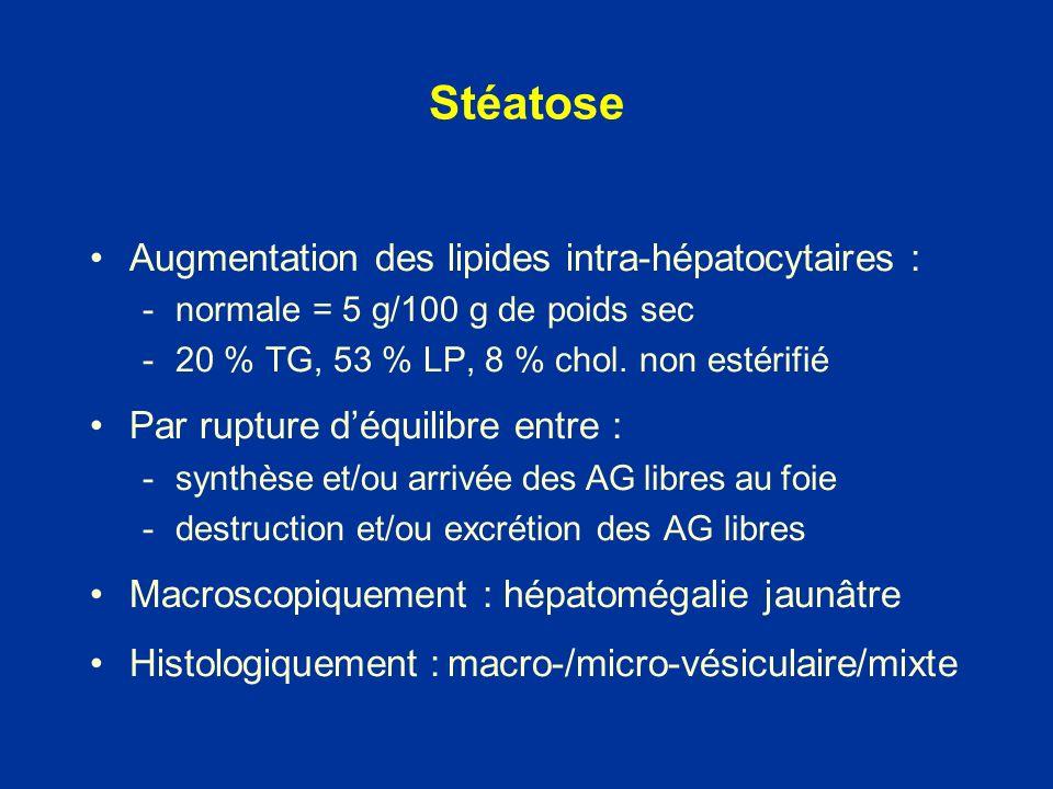 Stéatose Augmentation des lipides intra-hépatocytaires : -normale = 5 g/100 g de poids sec -20 % TG, 53 % LP, 8 % chol. non estérifié Par rupture déqu