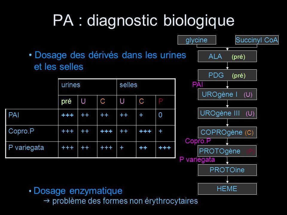 PA : diagnostic biologique Succinyl CoAglycine PROTOine PROTOgène (P) COPROgène (C) UROgène III (U) UROgène I (U) PDG (pré) ALA (pré) HEME urinesselle