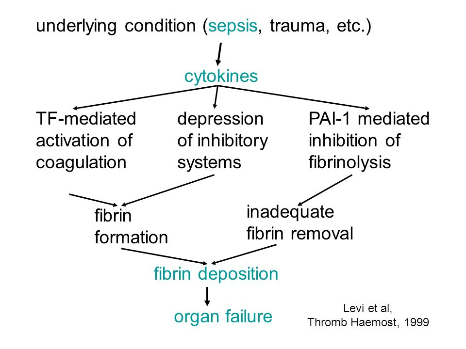 underlying condition (sepsis, trauma, etc.) cytokines TF-mediated activation of coagulation depression of inhibitory systems PAI-1 mediated inhibition