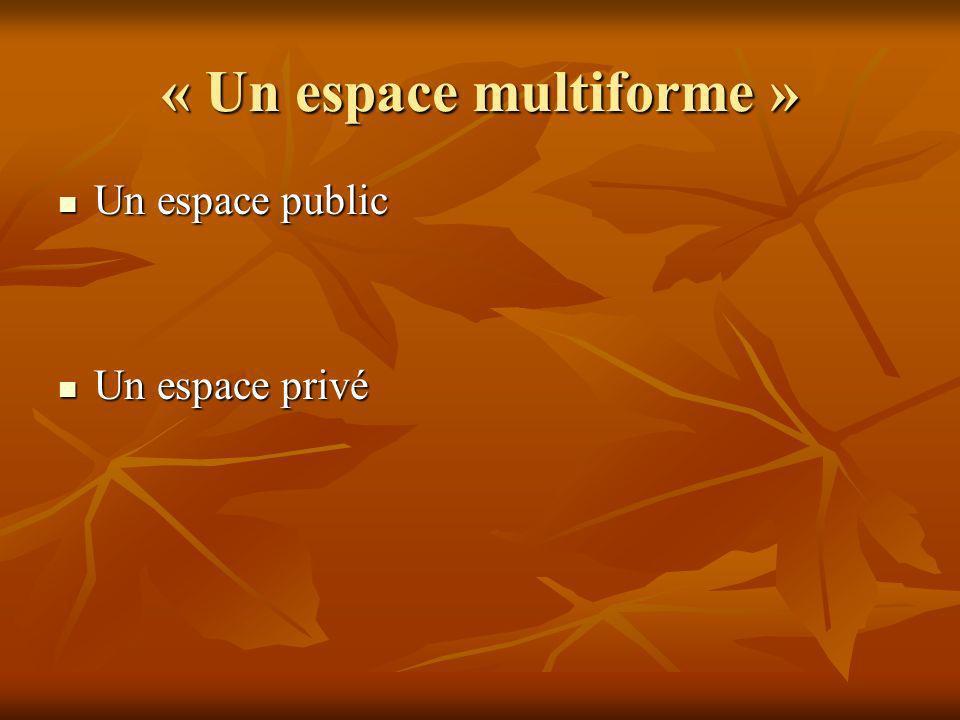 « Un espace multiforme » Un espace public Un espace public Un espace privé Un espace privé