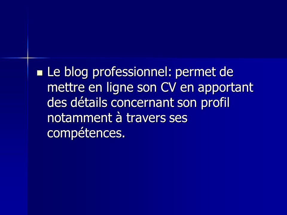 Le blog professionnel: permet de mettre en ligne son CV en apportant des détails concernant son profil notamment à travers ses compétences.