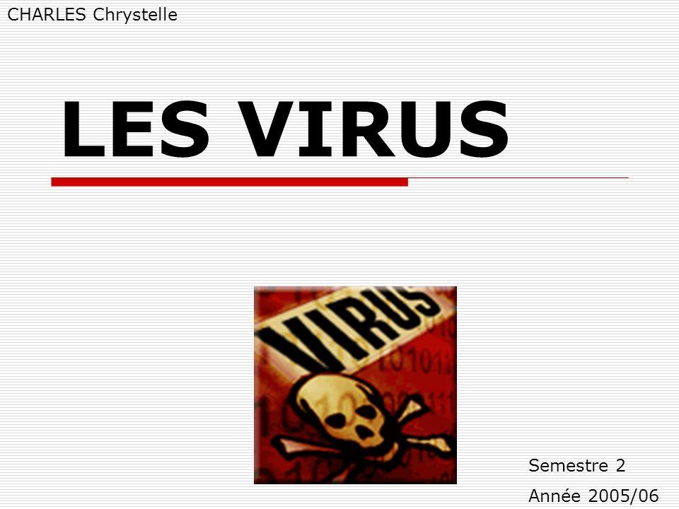 LES VIRUS - TICE 2 LES VIRUS CHARLES Chrystelle Semestre 2 Année 2005/06