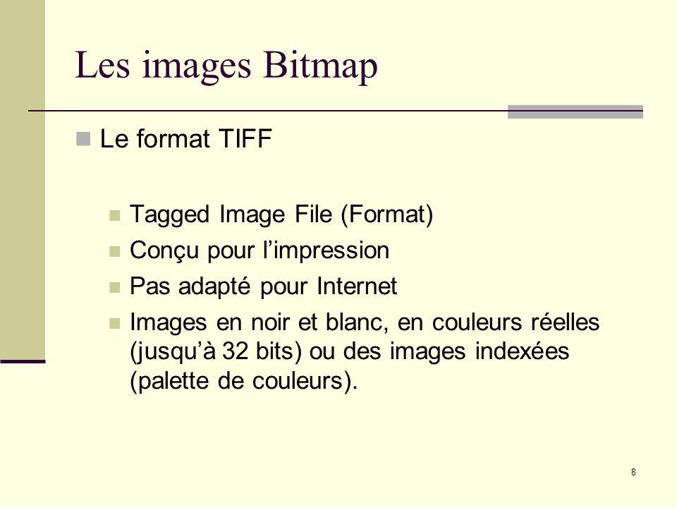 8 Les images Bitmap Le format TIFF Tagged Image File (Format) Conçu pour limpression Pas adapté pour Internet Images en noir et blanc, en couleurs rée