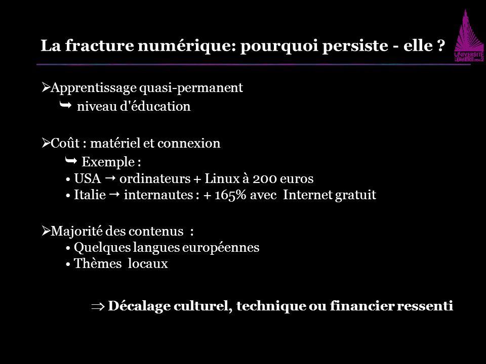 Apprentissage quasi-permanent niveau d'éducation Coût : matériel et connexion Exemple : USA ordinateurs + Linux à 200 euros Italie internautes : + 165