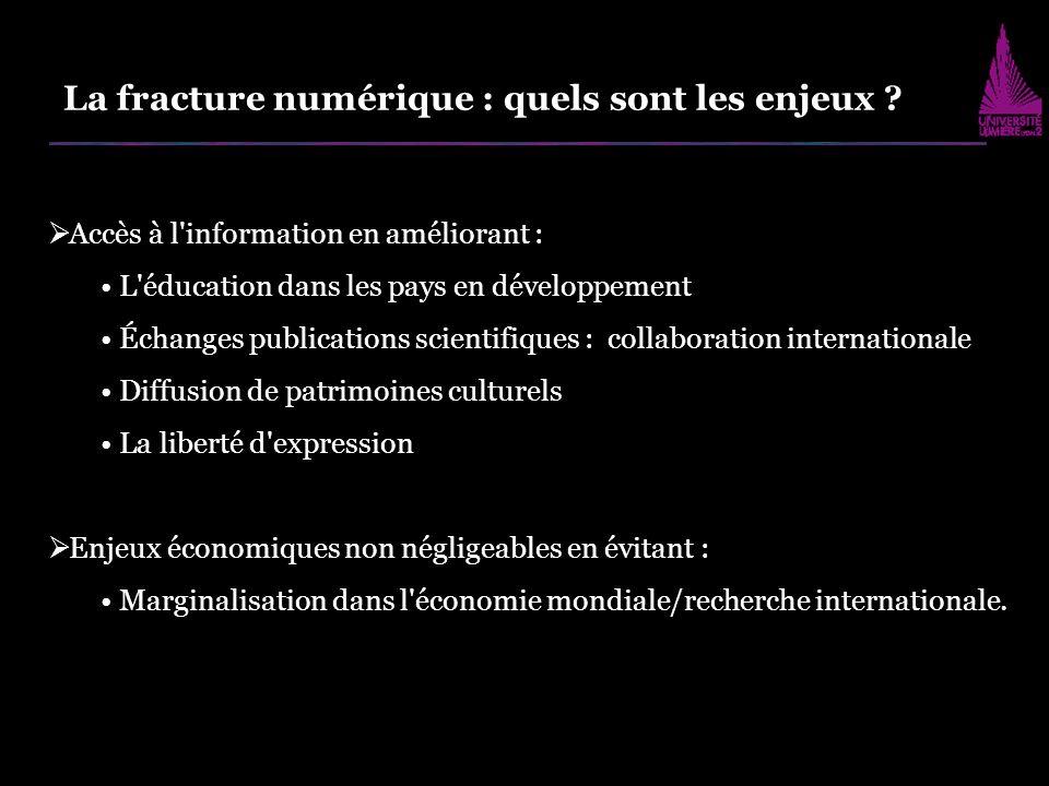 Fracture numérique : Incontestable - grande ampleur Ségrégation solide capital économique, social et culturel Avantages que peu possèdent .