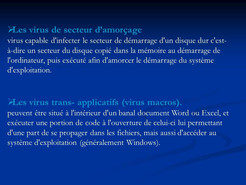 Les virus de secteur damorçage virus capable d'infecter le secteur de démarrage d'un disque dur c'est- à-dire un secteur du disque copié dans la mémoi