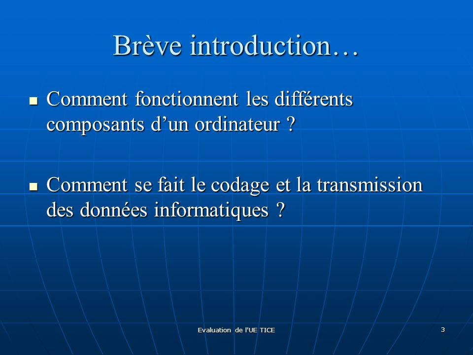 Evaluation de l'UE TICE 3 Brève introduction… Comment fonctionnent les différents composants dun ordinateur ? Comment fonctionnent les différents comp