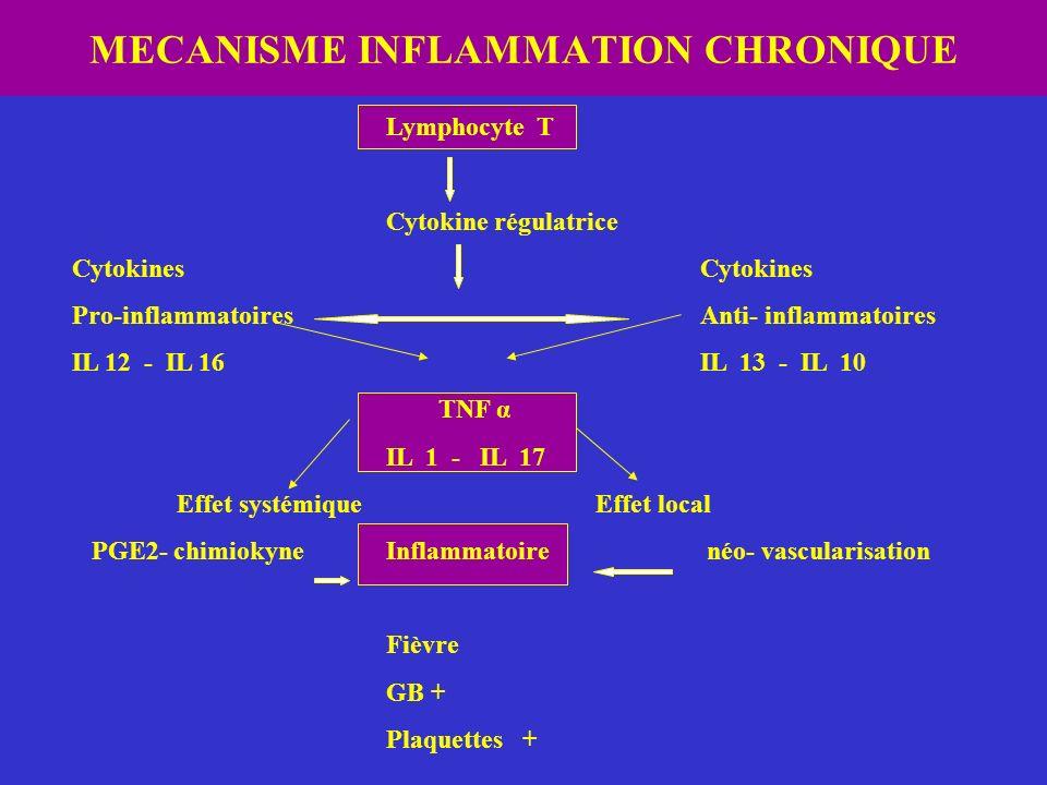 MECANISME INFLAMMATION CHRONIQUE Lymphocyte T Cytokine régulatriceCytokines Pro-inflammatoiresAnti- inflammatoires IL 12 - IL 16IL 13 - IL 10 TNF α IL