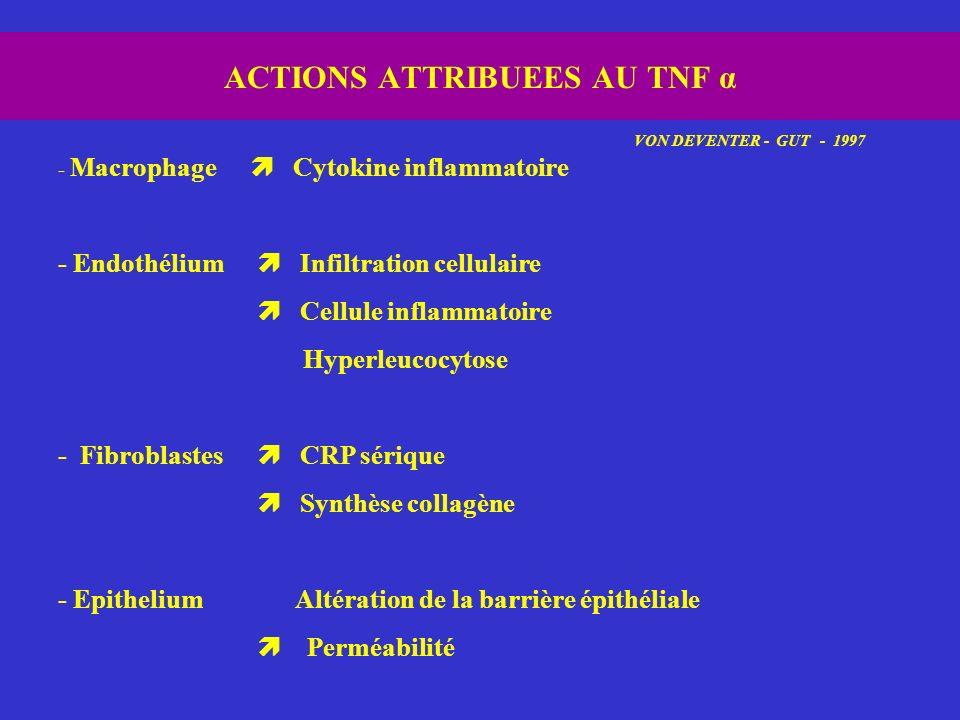 ACTIONS ATTRIBUEES AU TNF α VON DEVENTER - GUT - 1997 - Macrophage Cytokine inflammatoire - Endothélium Infiltration cellulaire Cellule inflammatoire