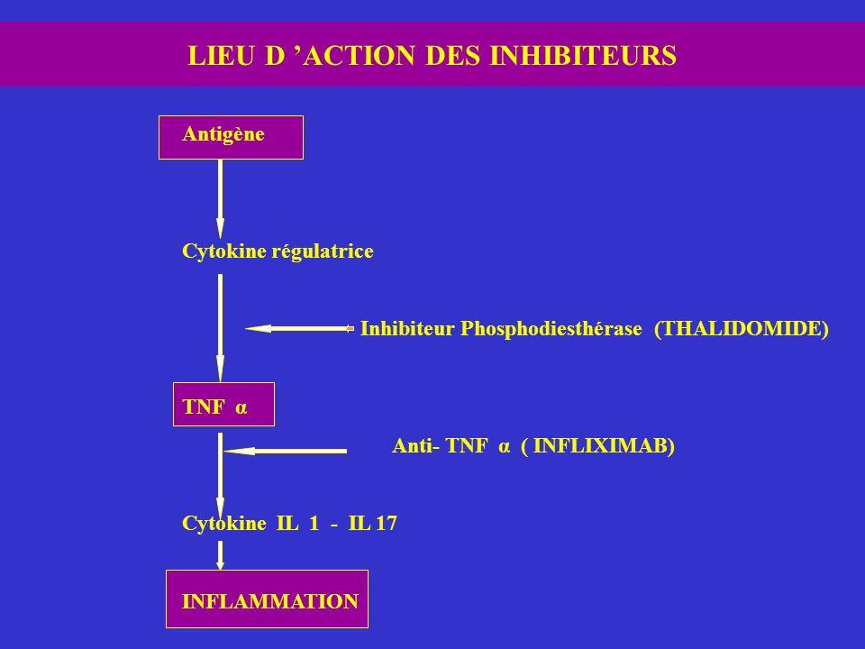LIEU D ACTION DES INHIBITEURS Antigène Cytokine régulatrice Inhibiteur Phosphodiesthérase (THALIDOMIDE) TNF α Anti- TNF α ( INFLIXIMAB) Cytokine IL 1