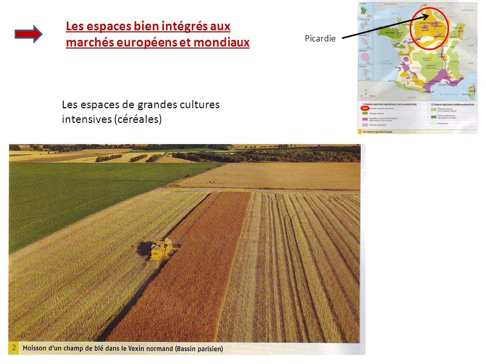 Les espaces de grandes cultures intensives (céréales) Les espaces bien intégrés aux marchés européens et mondiaux Picardie