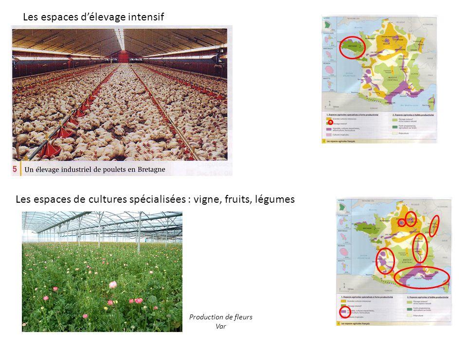 Les espaces délevage intensif Les espaces de cultures spécialisées : vigne, fruits, légumes Production de fleurs Var
