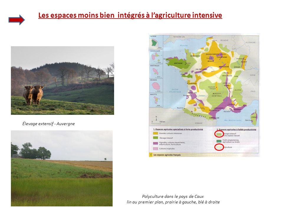 Les espaces moins bien intégrés à lagriculture intensive Élevage extensif - Auvergne Polyculture dans le pays de Caux lin au premier plan, prairie à g