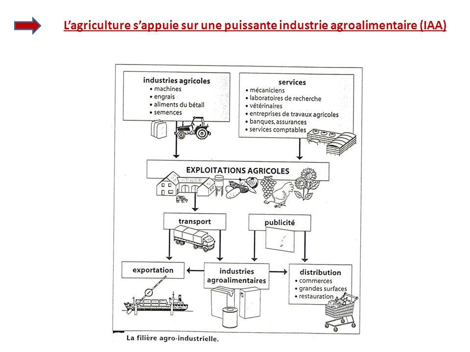 Lagriculture sappuie sur une puissante industrie agroalimentaire (IAA)