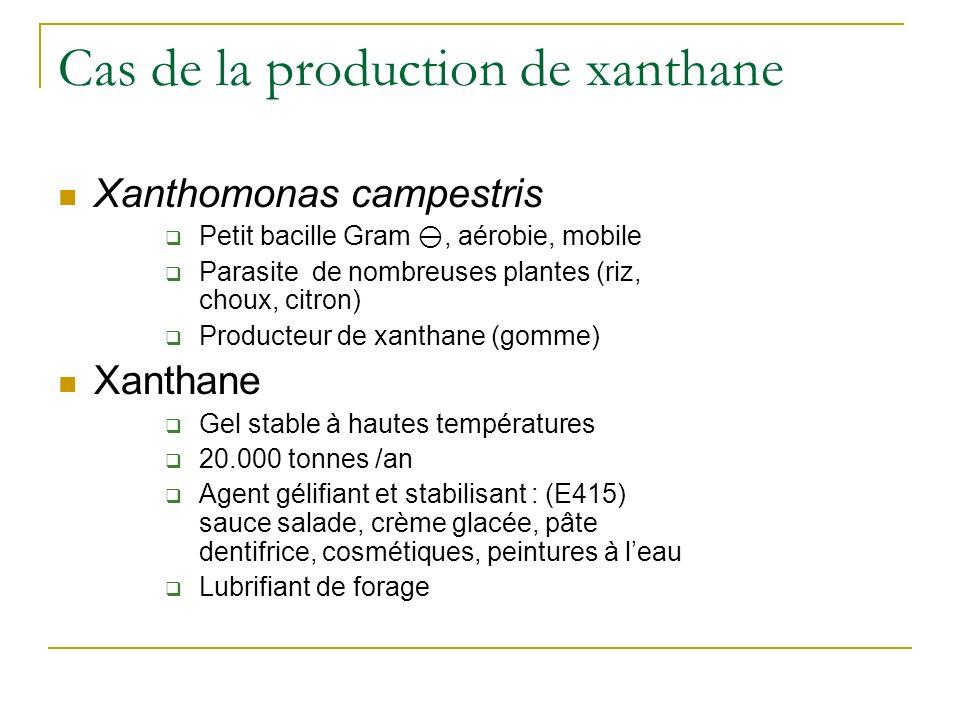 Cas de la production de xanthane Xanthomonas campestris Petit bacille Gram, aérobie, mobile Parasite de nombreuses plantes (riz, choux, citron) Produc