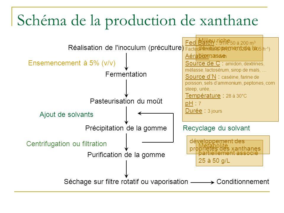 Schéma de la production de xanthane Réalisation de l'inoculum (préculture) Ensemencement à 5% (v/v) Fermentation Pasteurisation du moût Purification d