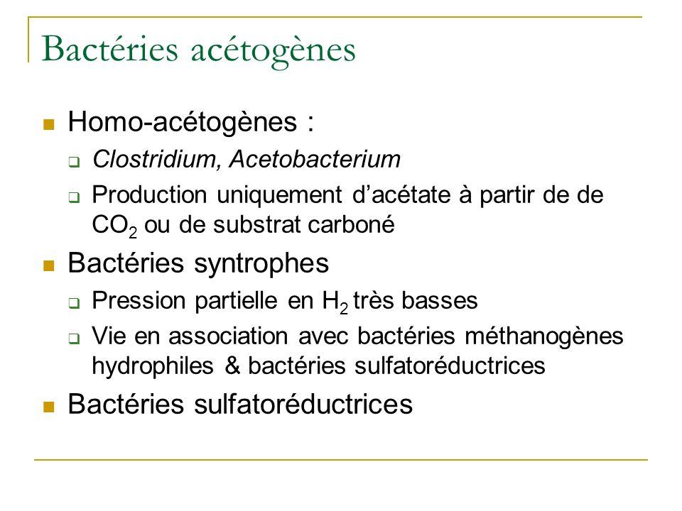 Bactéries acétogènes Homo-acétogènes : Clostridium, Acetobacterium Production uniquement dacétate à partir de de CO 2 ou de substrat carboné Bactéries