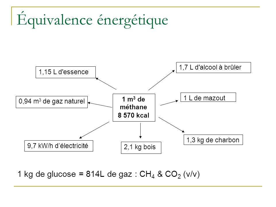 Équivalence énergétique 1 kg de glucose = 814L de gaz : CH 4 & CO 2 (v/v) 1 m 3 de méthane 8 570 kcal 1,15 L d'essence 1,7 L d'alcool à brûler 0,94 m
