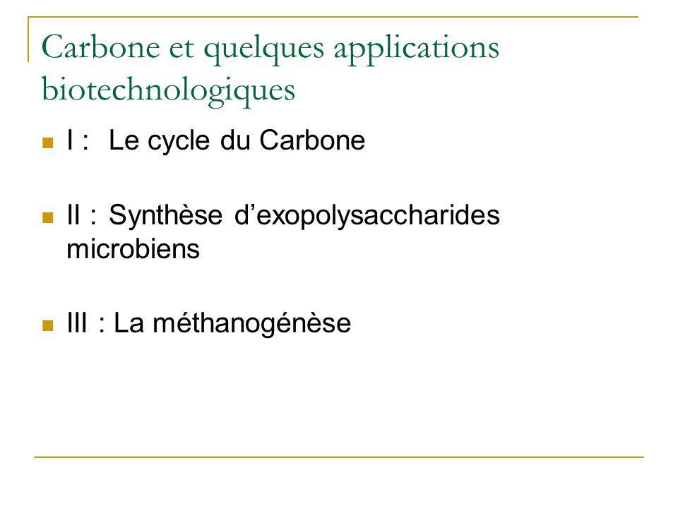 I – Le cycle du carbone : forme simplifiée Processus aérobie Processus anaérobie CO 2 CO Formes minérales (CH 2 O)n Formes organiques AUTOTROPHES Organismes photosynthétiques, algues vertes, cyanobactéries HETEROTROPHES Respiration, décarboxylation, fermentation … De très nombreux micro-organismes