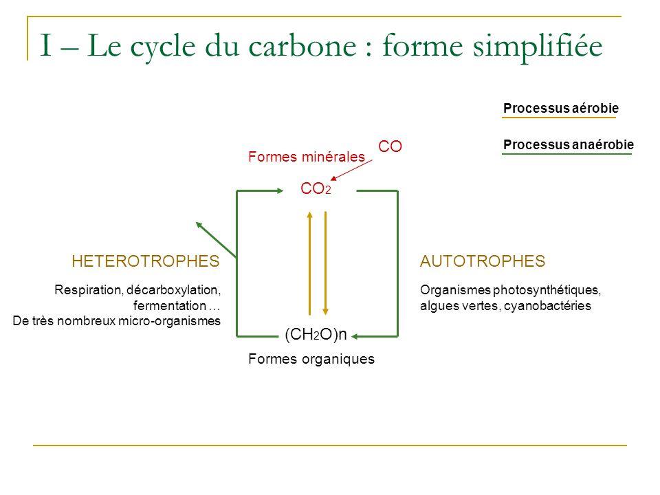 C organique I – Le cycle du carbone : Algues, Bactéries, plantes Biomasse microbienne NUTRITION Animaux NUTRITION CO 2 Chimioautotrophes phototrophes CH 4 méthanogènes méthylotrophes CH 4 méthanogènes méthylotrophes FERMENTATION Réserve de C organique Mort / dégradation Excrétion Mort / dégradation NUTRITION Hétérotrophes (Saprophytes) O2O2 H2OH2O RESPIRATION