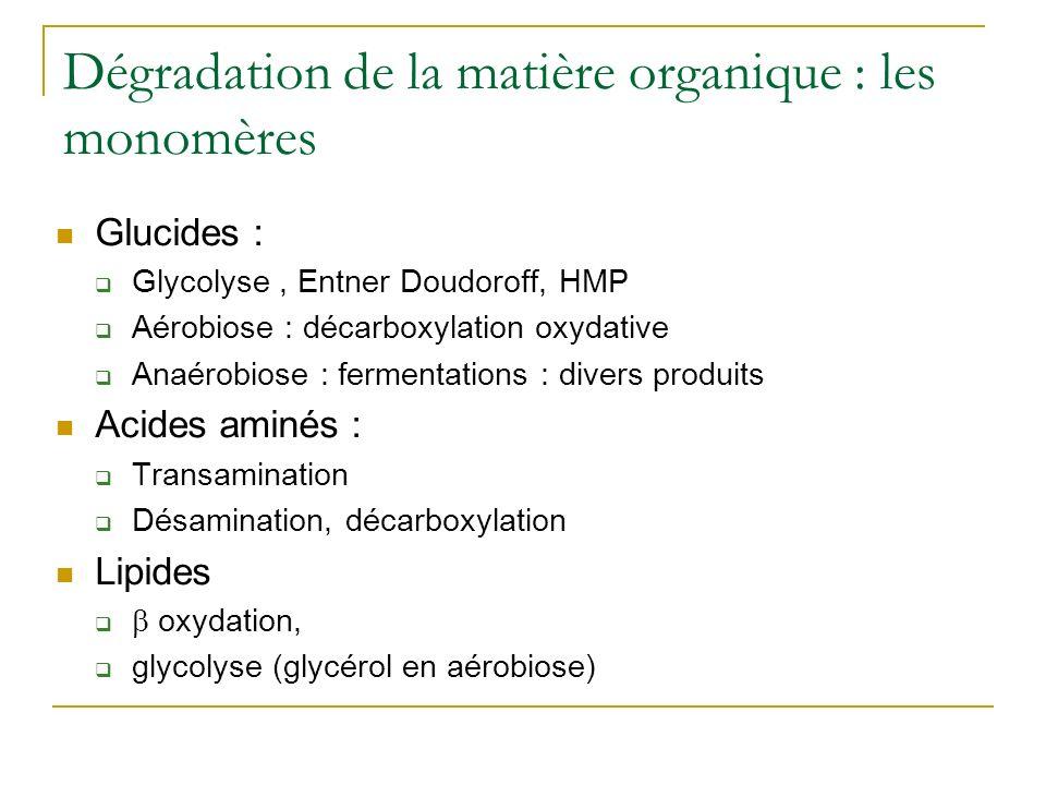 Dégradation de la matière organique : les monomères Glucides : Glycolyse, Entner Doudoroff, HMP Aérobiose : décarboxylation oxydative Anaérobiose : fe