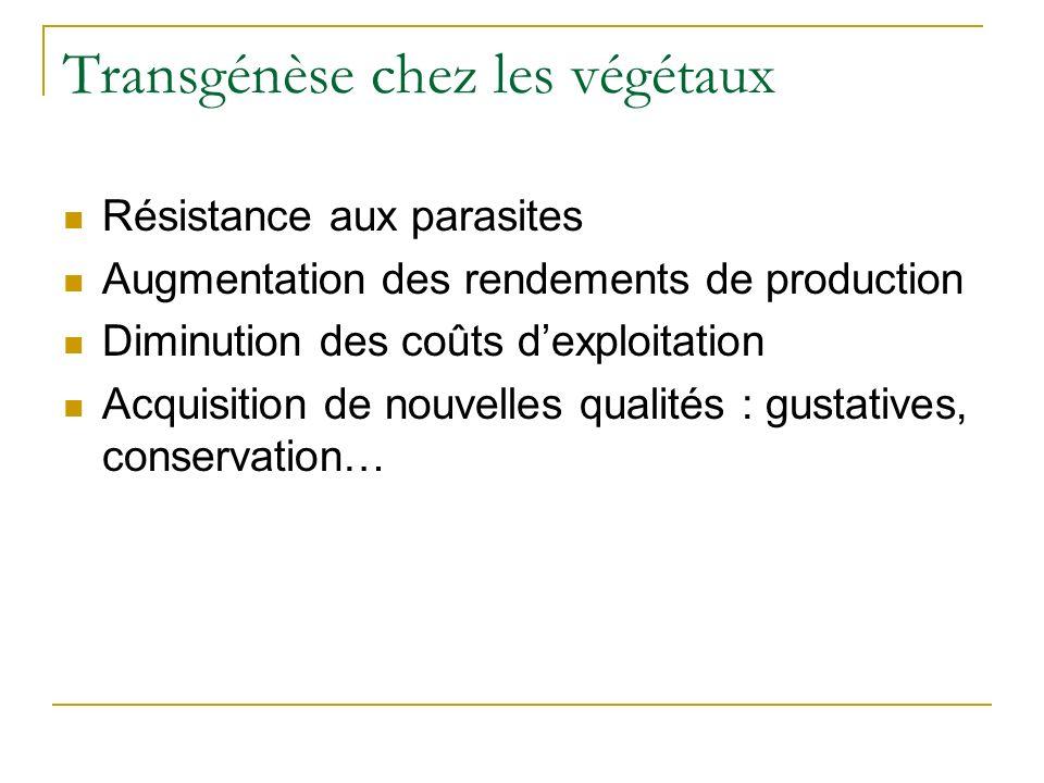 Transgénèse chez les végétaux Résistance aux parasites Augmentation des rendements de production Diminution des coûts dexploitation Acquisition de nouvelles qualités : gustatives, conservation…