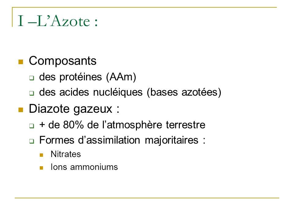 I –LAzote : Composants des protéines (AAm) des acides nucléiques (bases azotées) Diazote gazeux : + de 80% de latmosphère terrestre Formes dassimilation majoritaires : Nitrates Ions ammoniums