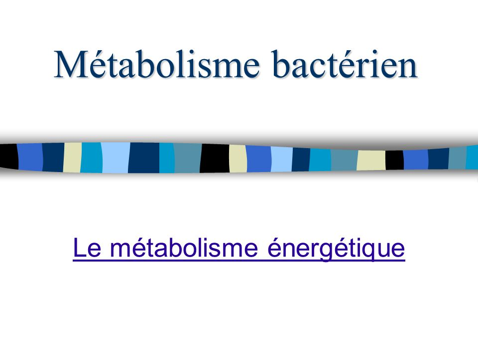 Métabolisme bactérien Le métabolisme énergétique