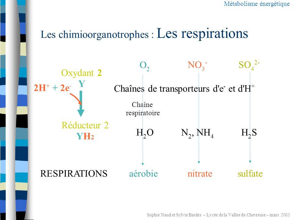 Sophie Naud et Sylvie Bardes – Lycée de la Vallée de Chevreuse – mars 2005 Les chimioorganotrophes : nature de l oxydant 2 .