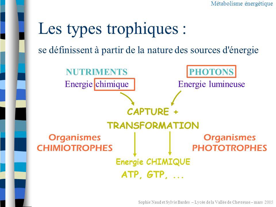 Sophie Naud et Sylvie Bardes – Lycée de la Vallée de Chevreuse – mars 2005 Les sources d énergie Métabolisme énergétique PHOTONSNUTRIMENTS Energie chimiqueEnergie lumineuse CAPTURE + TRANSFORMATION Energie CHIMIQUE ATP, GTP,...