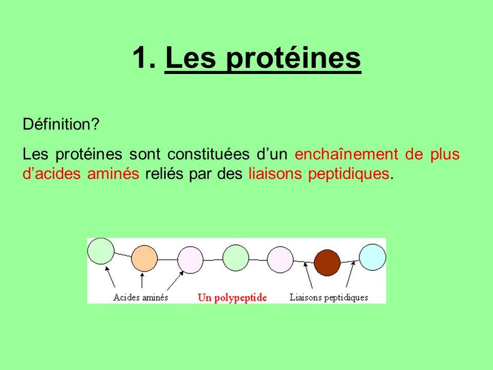 1. Les protéines Définition? Les protéines sont constituées dun enchaînement de plus dacides aminés reliés par des liaisons peptidiques.