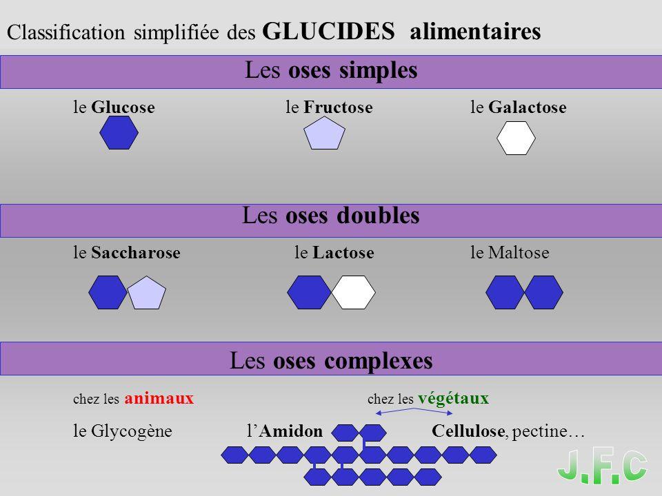 LES GLUCIDES ( LES OSES ) Classification simplifiée des GLUCIDES alimentaires Les oses simples le Glucose le Fructosele Galactose Les oses doubles le Saccharose le Lactosele Maltose Les oses complexes chez les animaux chez les végétaux le Glycogène lAmidon Cellulose, pectine…