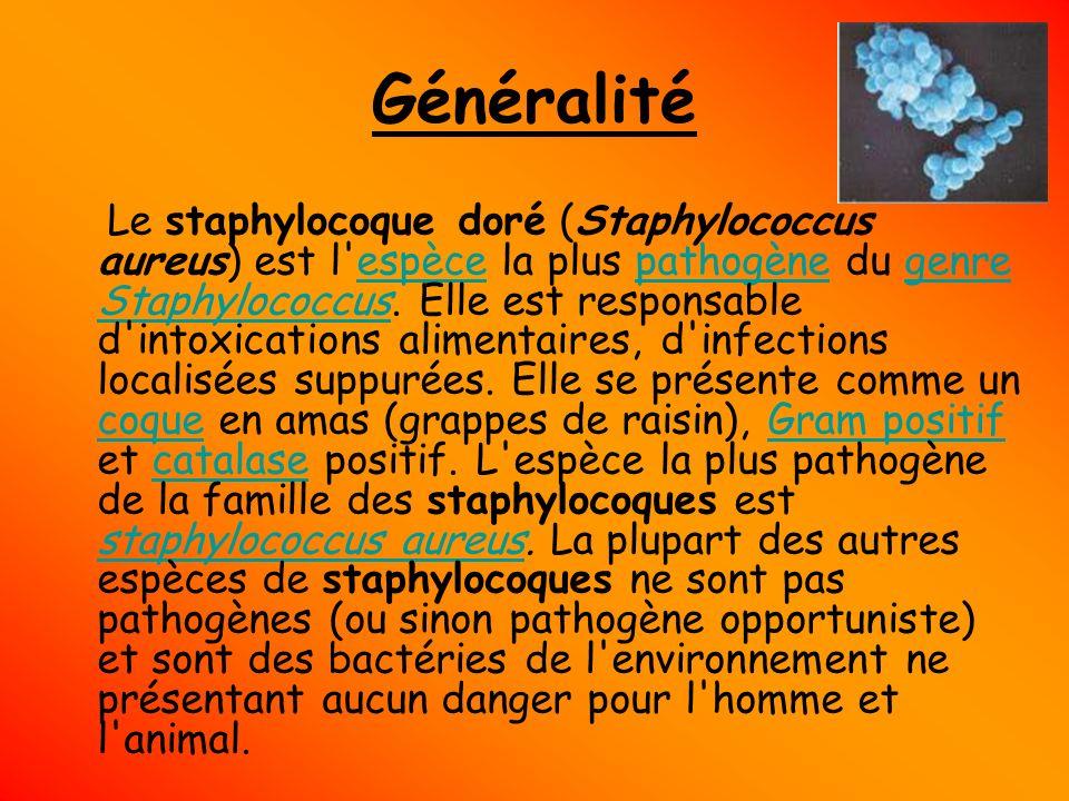 Généralité Le staphylocoque doré (Staphylococcus aureus) est l'espèce la plus pathogène du genre Staphylococcus. Elle est responsable d'intoxications