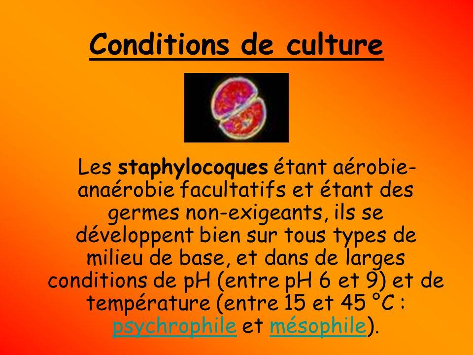 Conditions de culture Les staphylocoques étant aérobie- anaérobie facultatifs et étant des germes non-exigeants, ils se développent bien sur tous type