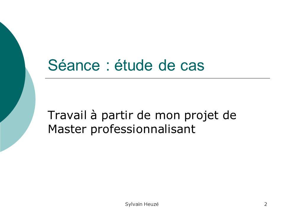 Sylvain Heuzé2 Séance : étude de cas Travail à partir de mon projet de Master professionnalisant