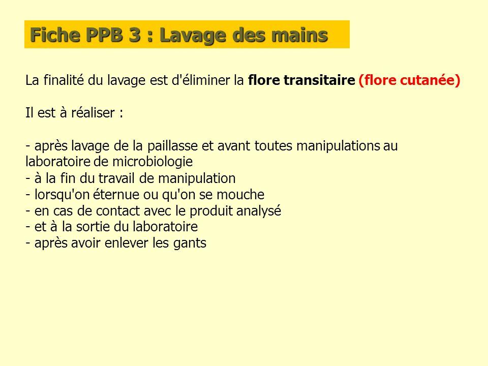 Fiche PPB 3 : Lavage des mains La finalité du lavage est d'éliminer la flore transitaire (flore cutanée) Il est à réaliser : - après lavage de la pail
