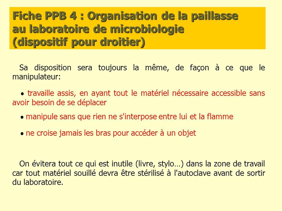 Fiche PPB 4 : Organisation de la paillasse au laboratoire de microbiologie (dispositif pour droitier) Sa disposition sera toujours la même, de façon à