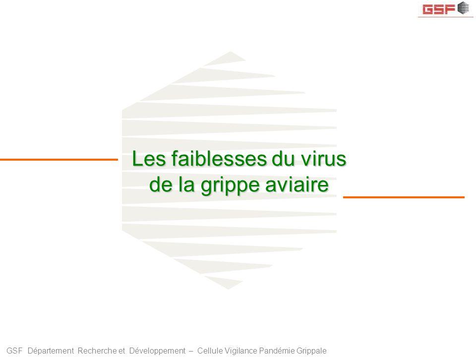 GSF Département Recherche et Développement – Cellule Vigilance Pandémie Grippale Les faiblesses du virus de la grippe aviaire