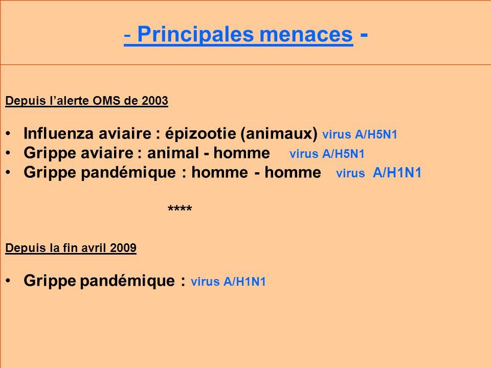 - Principales menaces - Depuis lalerte OMS de 2003 Influenza aviaire : épizootie (animaux) virus A/H5N1 Grippe aviaire : animal - homme virus A/H5N1 Grippe pandémique : homme - homme virus A/H1N1 **** Depuis la fin avril 2009 Grippe pandémique : virus A/H1N1