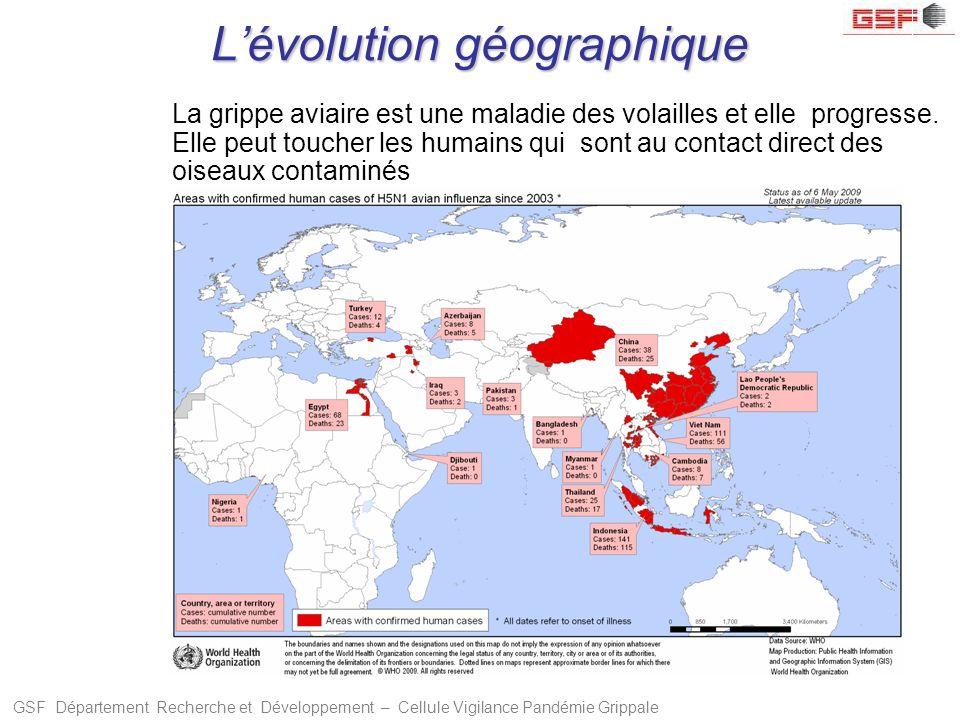 GSF Département Recherche et Développement – Cellule Vigilance Pandémie Grippale Lévolution géographique La grippe aviaire est une maladie des volaill