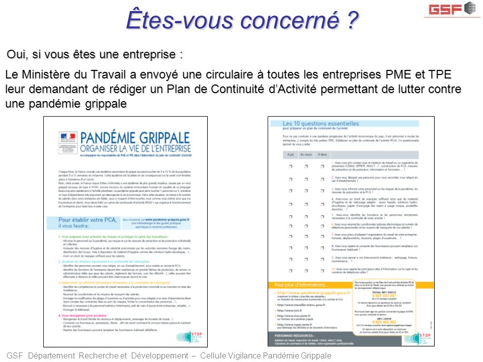 GSF Département Recherche et Développement – Cellule Vigilance Pandémie Grippale Êtes-vous concerné ? Oui, si vous êtes une entreprise : Le Ministère
