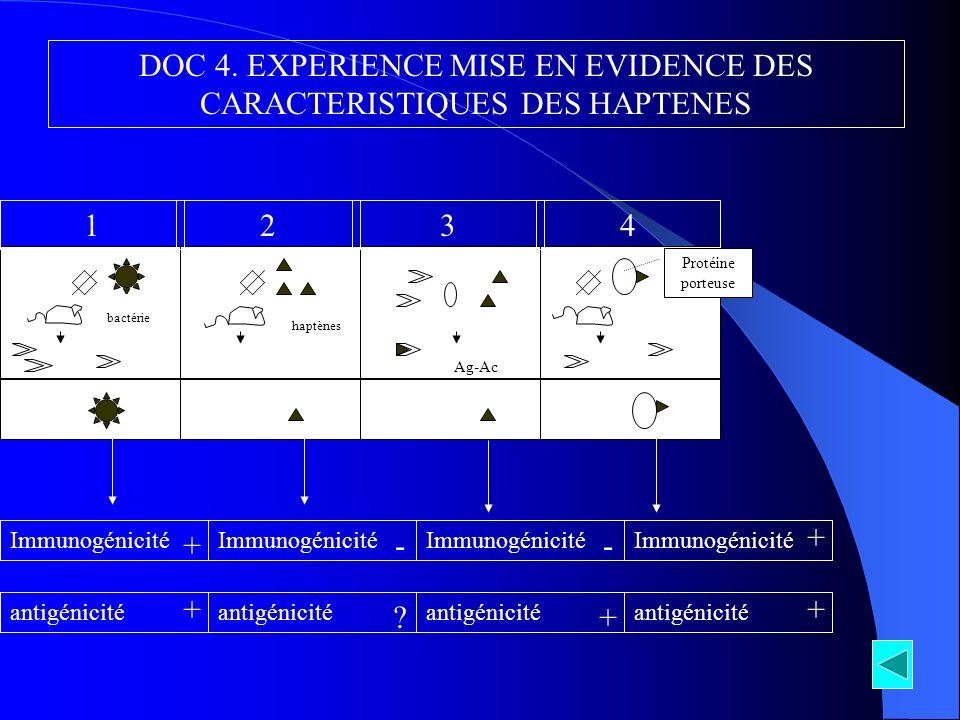 bactérie Ac haptènes Absence Ac + Complexe Ag-Ac Ac 1234 DOC 4. EXPERIENCE MISE EN EVIDENCE DES CARACTERISTIQUES DES HAPTENES Immunogénicité antigénic