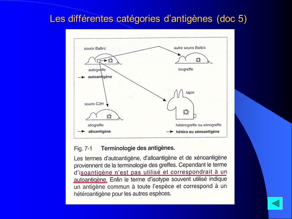 Les différentes catégories dantigènes (doc 5)