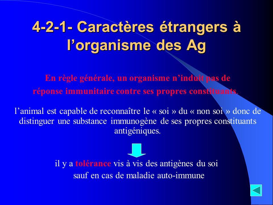 4-2-1- Caractères étrangers à lorganisme des Ag En règle générale, un organisme ninduit pas de réponse immunitaire contre ses propres constituants. la