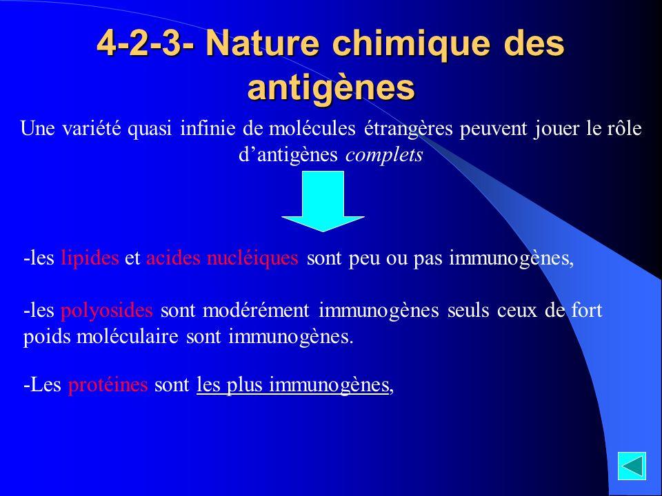 4-2-3- Nature chimique des antigènes Une variété quasi infinie de molécules étrangères peuvent jouer le rôle dantigènes complets -les lipides et acide