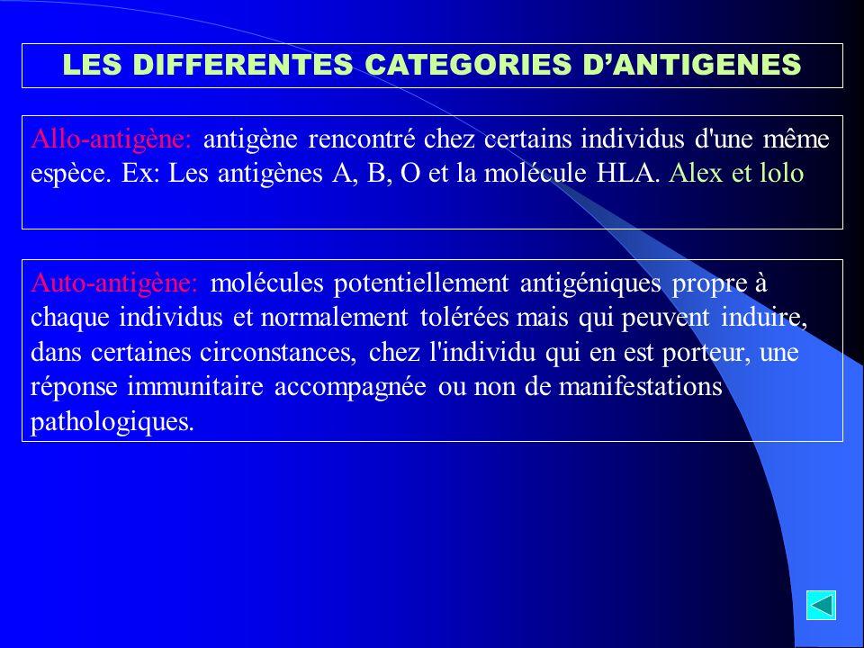 LES DIFFERENTES CATEGORIES DANTIGENES Allo-antigène: antigène rencontré chez certains individus d'une même espèce. Ex: Les antigènes A, B, O et la mol