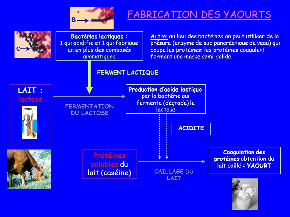 FABRICATION DES FROMAGES LAIT CAILLAGE action de la présure ou des bactéries LAIT CAILLE Lactosérum (eau, protéines et sels minéraux) EGOUTTAGE LAIT CAILLE EGOUTTE = FROMAGE FRAIS AFFINAGE PAR MOISISSURES et BACTERIES -fermentation du lactose -libération dacides gras aromatiques -production de composés azotés au goût caractéristique -production de gaz (CO2) -développement de moisissures (ex : roquefort..) aspect et goût FROMAGE AFFINE