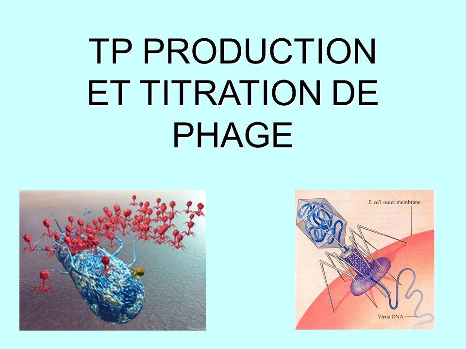 BACTERIOPHAGE P1 Bactériophage = virus infectant des bactéries sensible