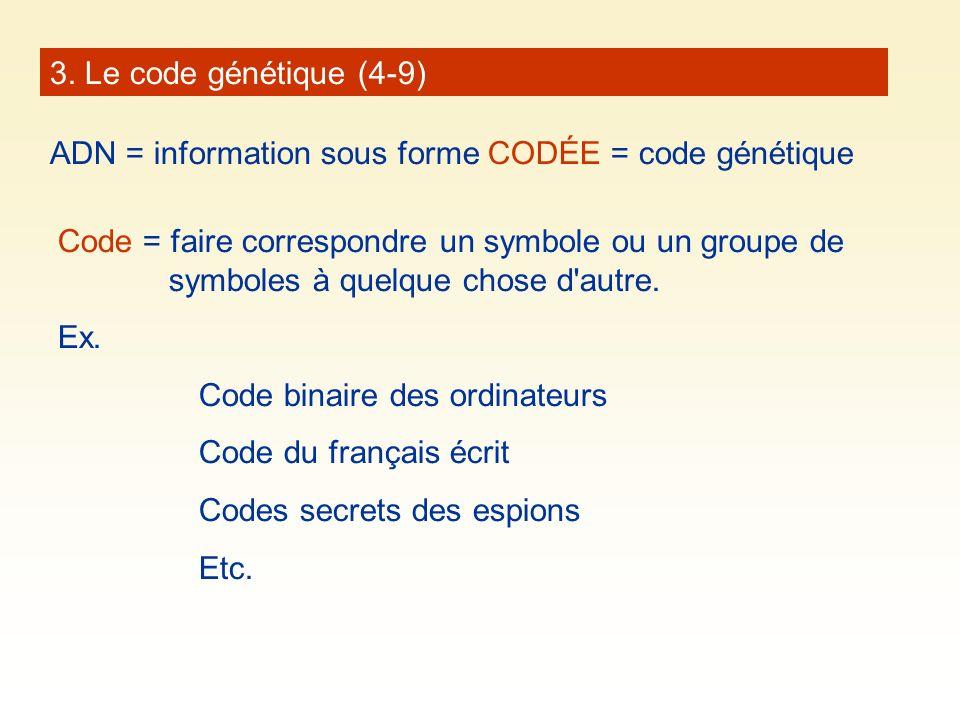 3. Le code génétique (4-9) ADN = information sous forme CODÉE = code génétique Code = faire correspondre un symbole ou un groupe de symboles à quelque